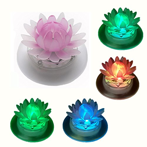 Floating Led Water Lights in Florida - 6