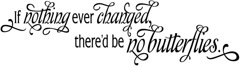 MOVANKRO If Nothing Ever Changed There'd be no Butterflies Vinyl Decal Inspirational Quotes Wall Sayings Motto Home Décor
