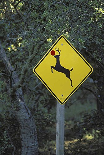 CA, Rudolph the reindeer crossing sign on Highway by Don Grall - 18