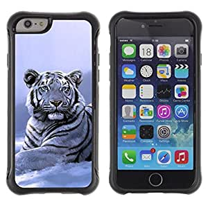 Paccase / Suave TPU GEL Caso Carcasa de Protección Funda para - Winter Snow Tiger White Blue Cold - Apple Iphone 6 PLUS 5.5