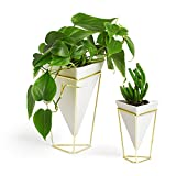 Umbra Trigg Desktop Planter Vase & Geometric