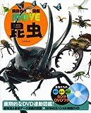 DVD付 昆虫 (講談社の動く図鑑MOVE)
