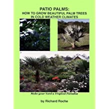Patio Palms: How to Grow Beautiful Palm Trees in Cold Weather Climates