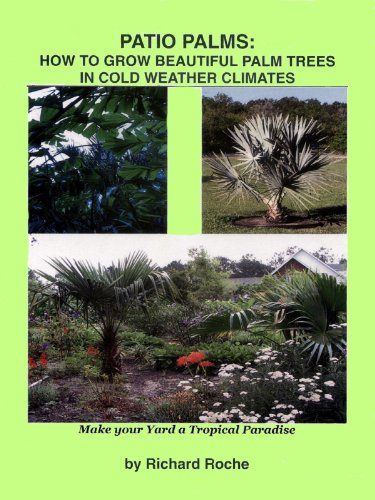 Beau Patio Palms: How To Grow Beautiful Palm Trees In Cold Weather Climates By  [Roche