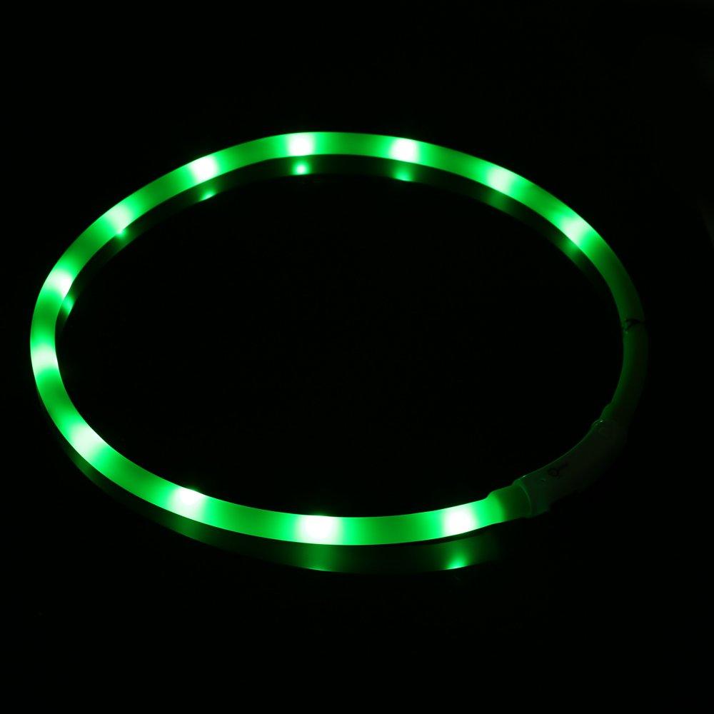 ZOGIN Collar de perro LED, collar de seguridad recargable USB para perro gato y otro animal doméstico, color verde