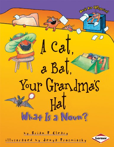 - A Cat, a Bat, Your Grandma's Hat: What is a Noun? (Words are CATegorical)