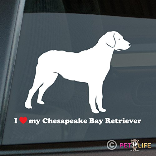 Chesapeake Bay Retriever Sticker - I Love My Chesapeake Bay Retriever Sticker Vinyl Auto Window chessie cbr