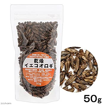 Amazon | 乾燥イエコオロギ 50g(...