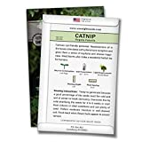 Sow Right Seeds - Catnip Seed for - Popular Herb