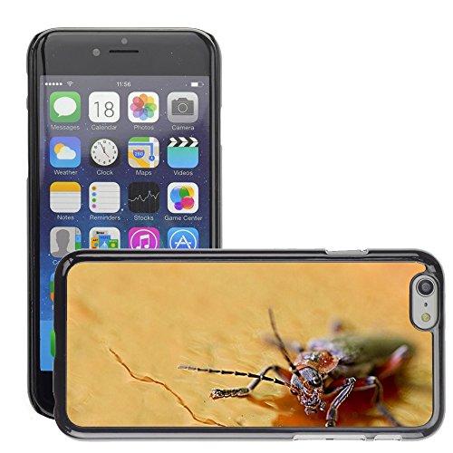 "Bild Hart Handy Schwarz Schutz Case Cover Schale Etui // M00133761 Schließen Insect Macro Natur // Apple iPhone 6 PLUS 5.5"""