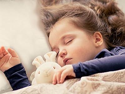 TILLYOU Toddler Pillow with Pillowcase