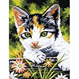 9 Inch x12 Inch Junior Paint By Number Kit - Kitten