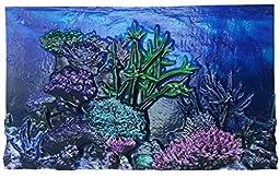 BioBubble 3D Coral Aquarium Background, 10 gal, Multicolor