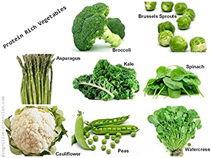 Seeds Care Grow Protein rich veg seeds- best pack for terrace or kitchen garden(