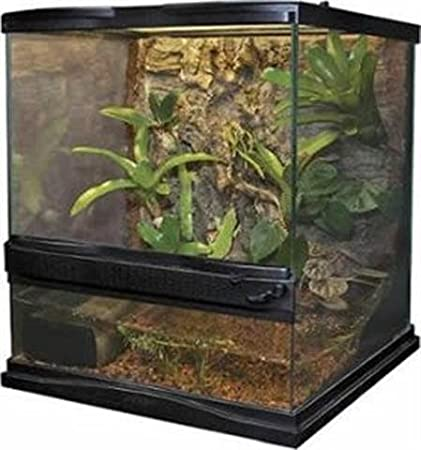 Amazon Com Zoo Med Laboratories Szmnt1 Naturalistic Terrarium