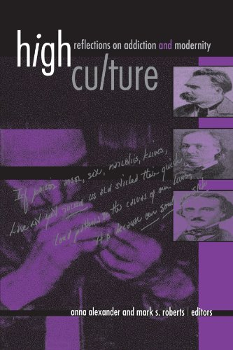 High Culture: Reflections on Addiction and Modernity (SUNY series, Hot Topics: Contemporary Philosophy and Culture)