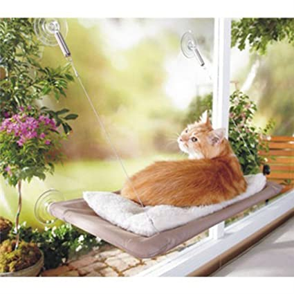 sunny seat cat bed cat window perch window seat suction cups space saving cat hammock amazon     sunny seat cat bed cat window perch window seat      rh   amazon