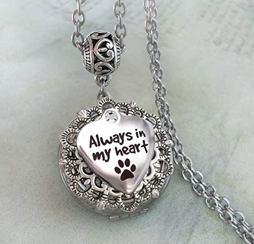 Pet Memorial Locket Necklace, Loss of Cat or Dog Bereavement Sympathy Gift, Always In My Heart with Paws, Elegant Jewelry for Grief and Mourning -