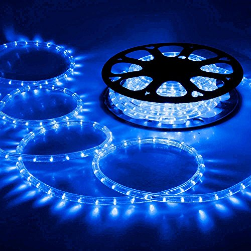 Disco Led Rope Lights in US - 8