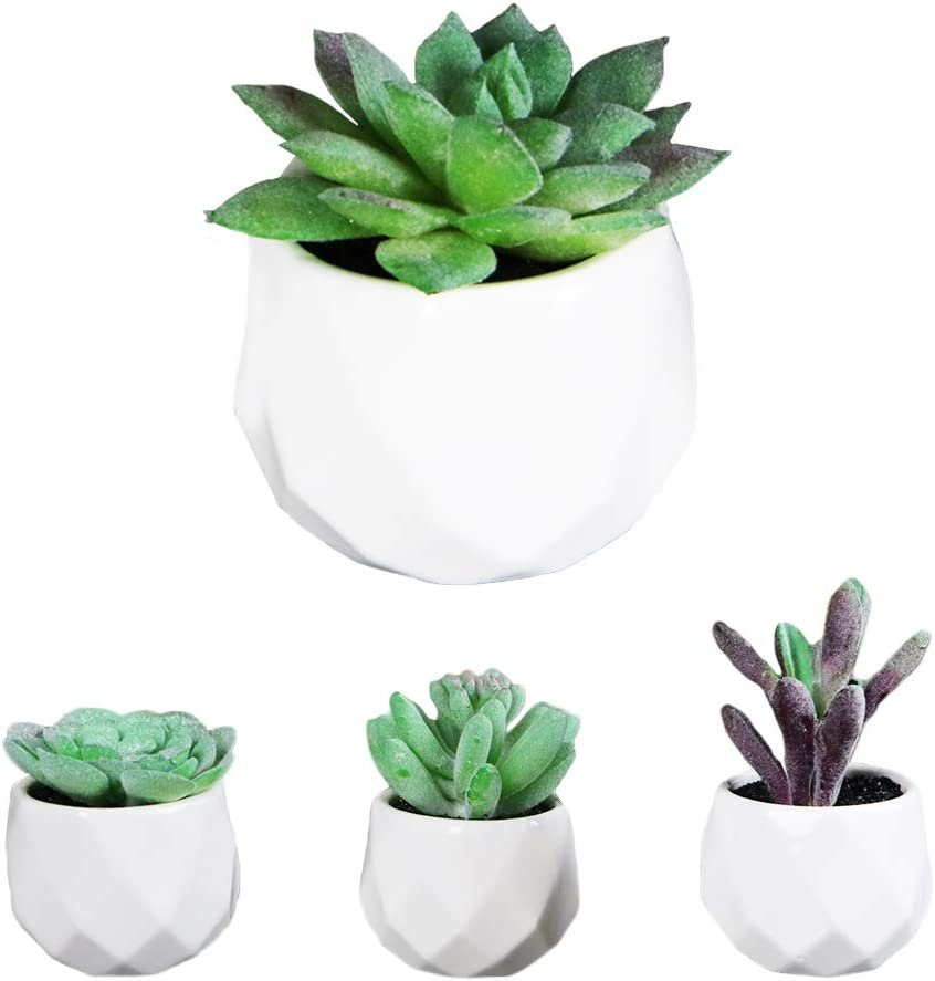 Artificial Succulent Plants   Lifelike Indoor Faux Decor for Home or Office   Realistic Desk Planters Potted in White Ceramic   Eco Friendly, Guaranteed to Stay Alive Forever (Set of 4)