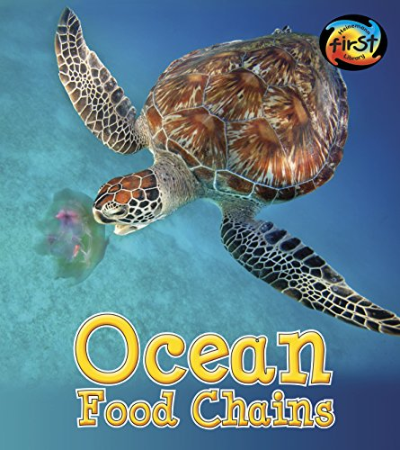Ocean Food Chains (Food Chains and Webs)
