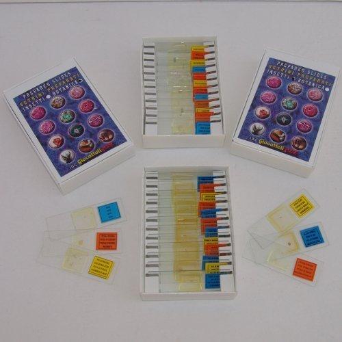 46 opinioni per 24 Vetrini Preparati per Tutti i Microscopi INSETTI- BOTANICA Made in Italy