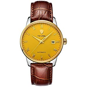 TEVISE Men's Fashion Dress Automatic Watch Thin Golden Dial Red Brown Genuine Leather Band