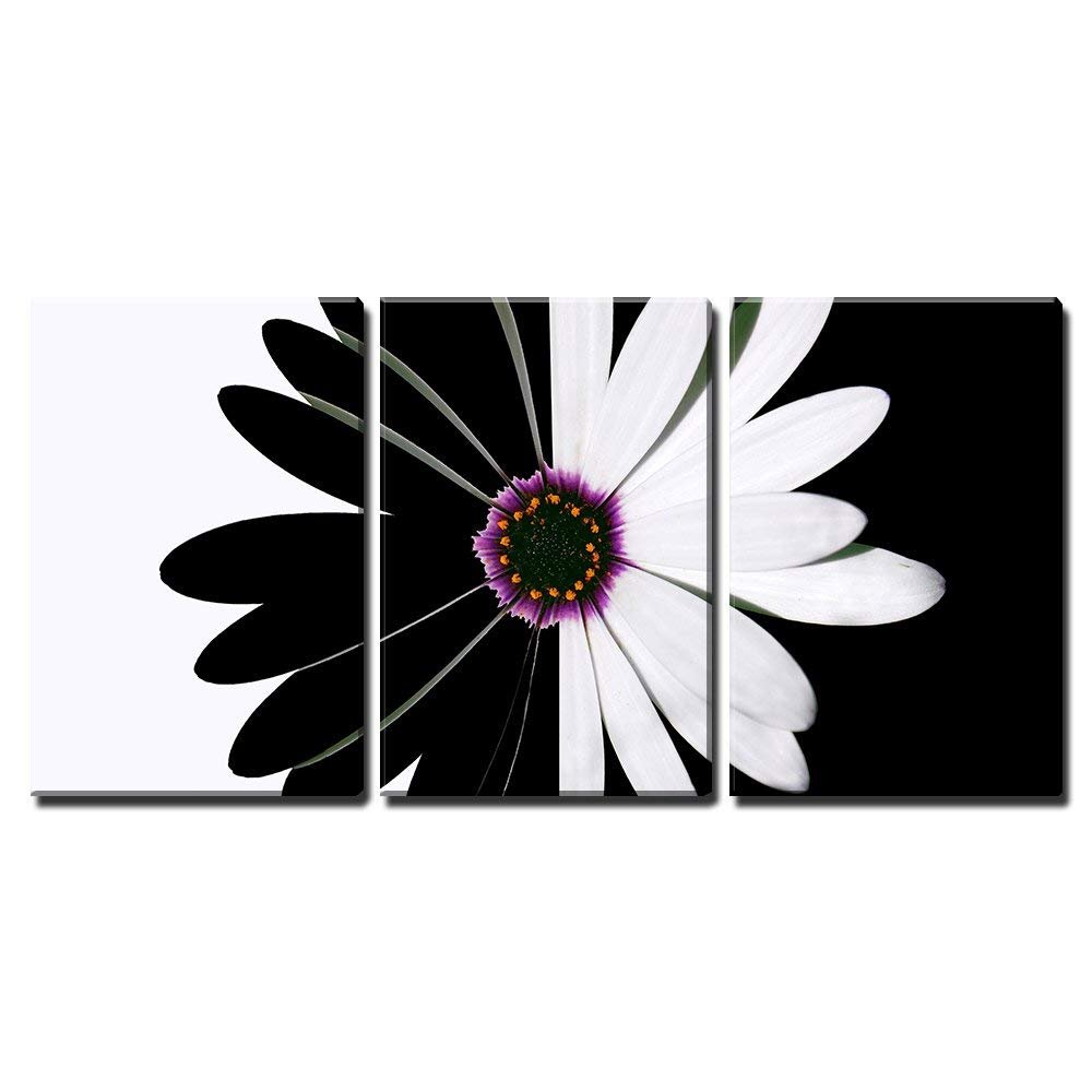 Flower Black And White X3 Panels Canvas Art Wall26