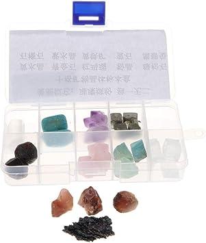 10 Piezas Juguete de Minerales y Rocas Colección con Caja de Almacenamiento Niños Adultos - #2: Amazon.es: Juguetes y juegos