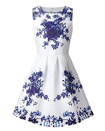 Girl's Fashion Sleeveless Vintage Floral Print Cute A Line Pleated Dress,Blue Flowers, 12 - 13 Years/Tag M
