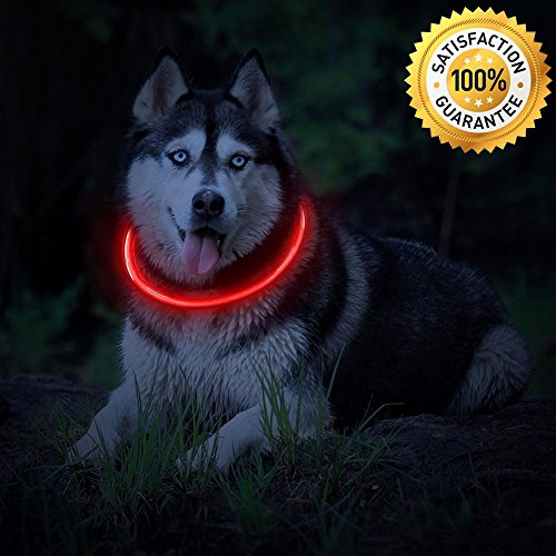 Mascot Led Dog Collar Usb Rechargeable Glowing Pet Dog Collar For Night Safety Fashion Light Up Collar For Small Medium Large Dogs  Red