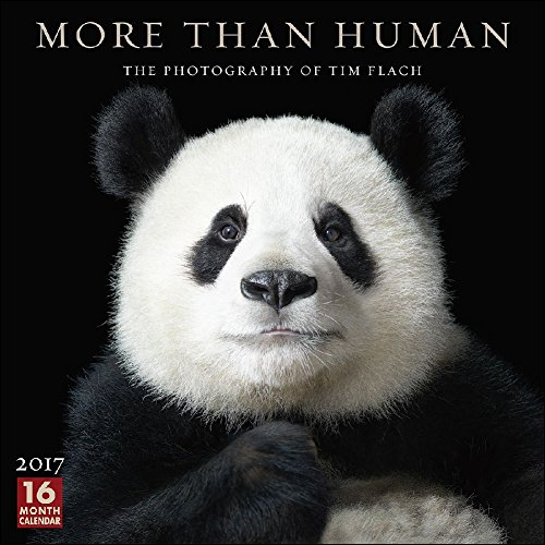 More Than Human The Photography of Tim Flach 2017 Wall Calendar