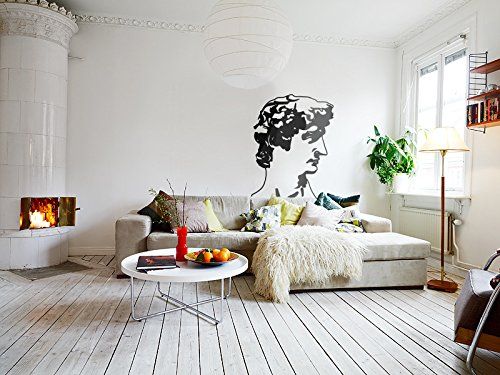 Wall Vinyl Sticker Decals Antiquity Sculpture Michelangelo Head Apollo L8 - Apollo Wall Sculpture