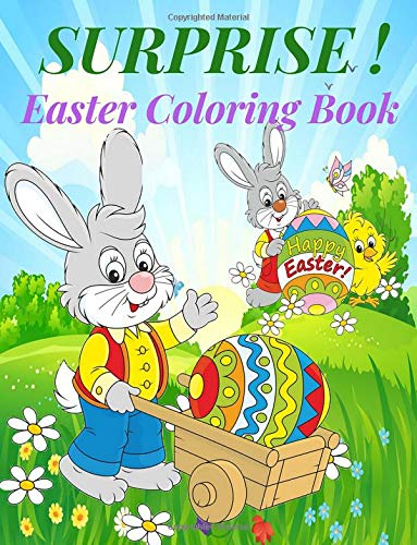 Amazon Com Surprise Easter Coloring Book Easter Bunny