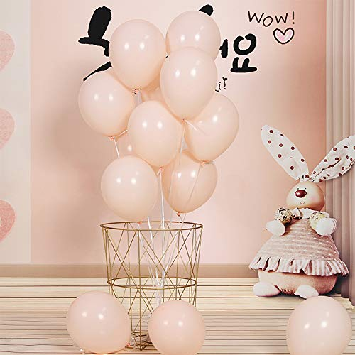 Pastel Balloons 100PCS 10 Inch Pastel Orange Color Balloons, Arch Kits Assorted Macaron Candy Colored Latex Party Balloons for Wedding Birthday Baby Shower Party Decor Supplies Arch Balloon Tower Balloon Garland (Orange) (Orange Pastel)