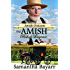 The Amish Bishop's Disgrace : Christian Romance Suspense (Amish Outcasts Book 1)