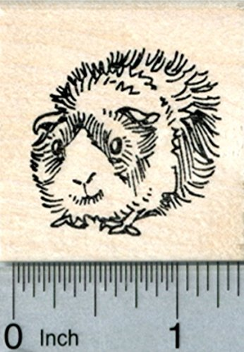 Guinea Pig Rubber Stamp, Size Small