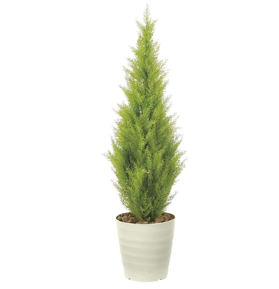 光触媒「V-CAT」を使用人工観葉植物●光触媒 光の楽園 ゴールドクレスト1.3m B07PDW3P9Y