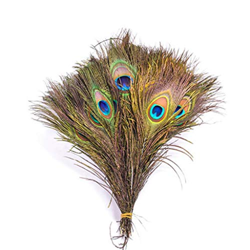 NszzJixo9 10PCS Natural Real Peacock Tail - Eye