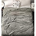 LBRO2M-Fleece-Bed-Blanket-Queen-Size-Super-Soft-Warm-Fuzzy-Velvet-Plush-Throw-Lightweight-Cozy-Couch-Blankets-90×90-Inch-Grey