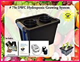 Complete Hydroponic Plant Growing BUBBLER system DWC KIT #7St-2 H2OtoGro