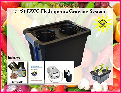 Complete Hydroponic Plant Growing BUBBLER system DWC KIT #7St-2 H2OtoGro by H2OToGro