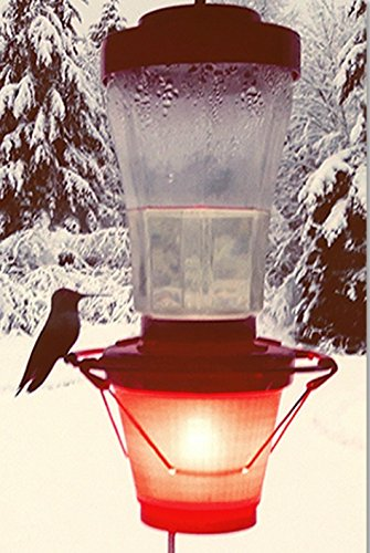Backyard Bird Centre Hummer Hearth Hummingbird Feeder Heater, Made in The U.S.A.