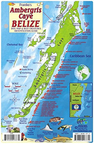 e Dive Map & Reef Creatures Guide Franko Maps Laminated Fish Card ()