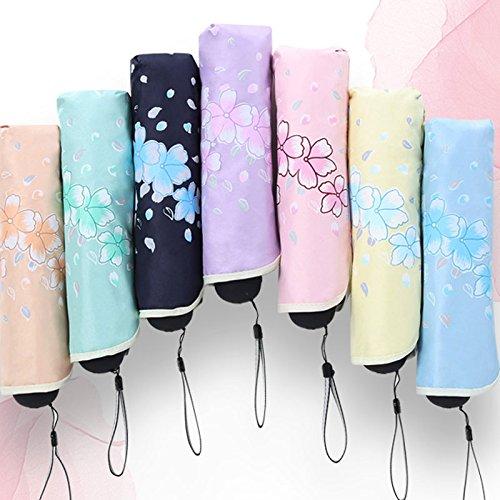 GYB Regenschirm UV-Schutz Regenschirme Vinyl Sonnenschutz Sonnenschirme Drei Falten Kleine frische klare Regenschirm (Farbe : D) F atfoXYQ9S