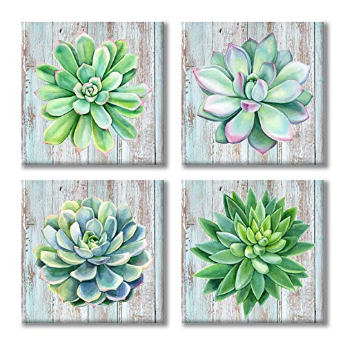 Paimuni Succulents Canvas Wall Art Watercolor Hand-Drawn Green Leaf Plants Printings Ready to Hang Wall Decor Botanical Giclee Prints 12x12inchesx4pcs ()