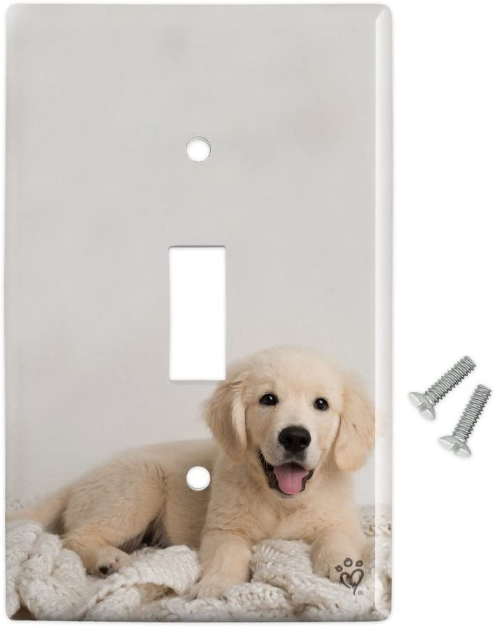 Amazon Com Graphics More Golden Retriever Puppy Dog And Blanket Plastic Wall Decor Toggle Light Switch Plate Cover Furniture Decor