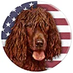 Irish Water Spaniel Dog USA Flag PopSockets Grip and Stand for Phones and Tablets 6