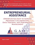 Entrepreneurial Assistance, Government Accountability Office, 1493512692