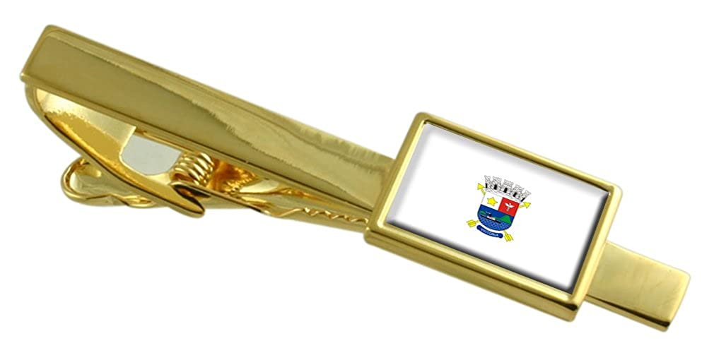 Select Gifts Vitoria City Espirito Santo State Flag Gold-Tone Tie Clip